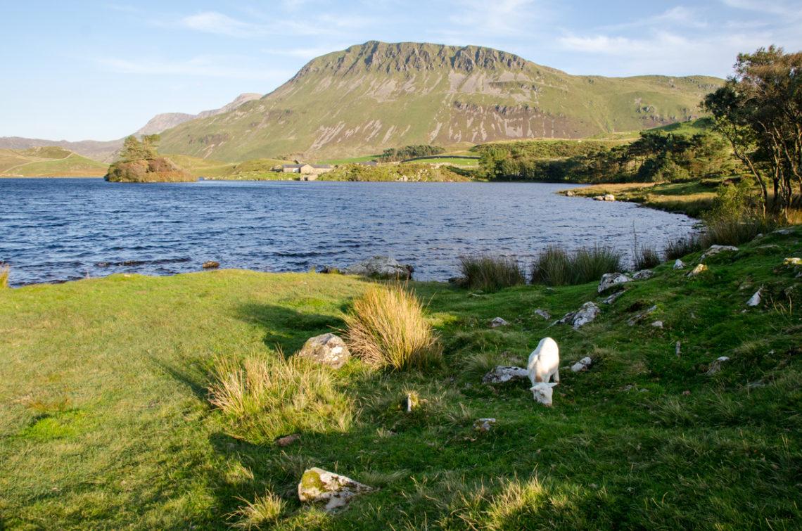 Cregennan Lakes