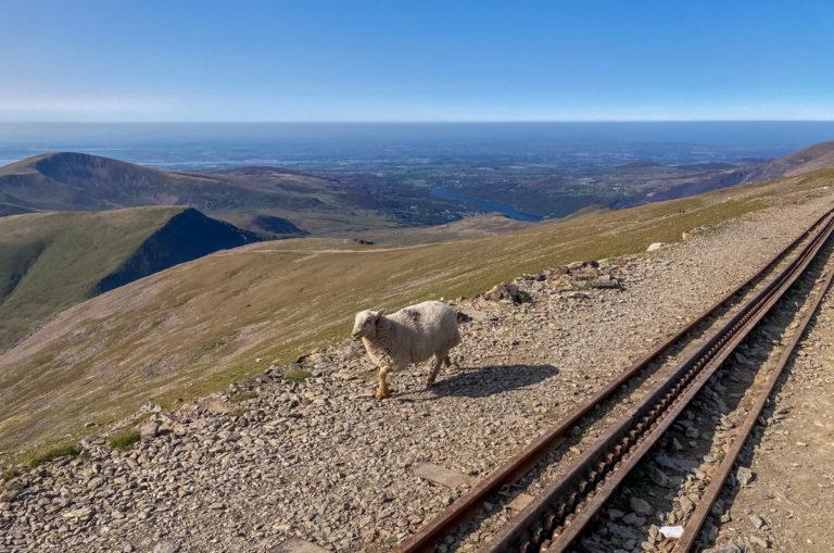 Mont Snowdon