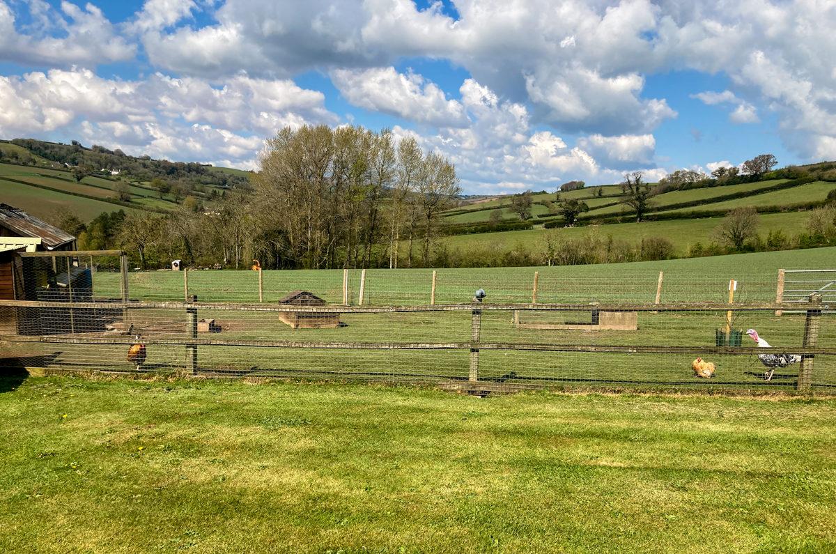 Fingle Farm